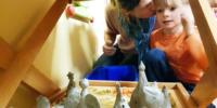 керамика в детском саду4